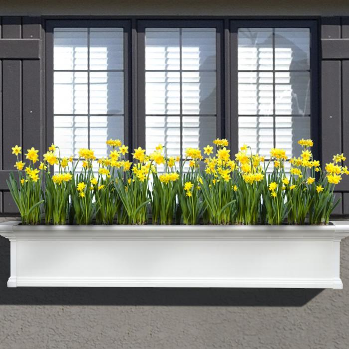 Flower Boxes - Yorkshire